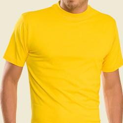 Die Shirts zählen zu der wichtigsten Bekleidung